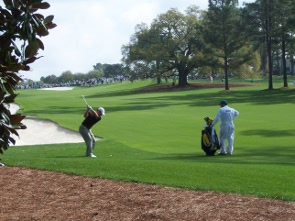 An English Rose At Augusta 19th Hole The Golf Blog