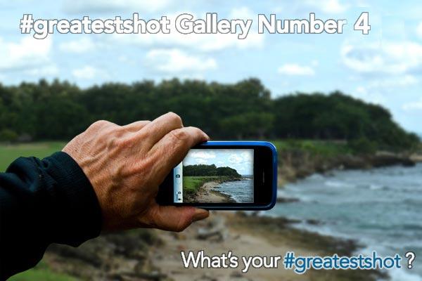 greatest shot gallery 4