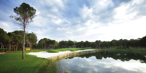 Montgomerie-14th