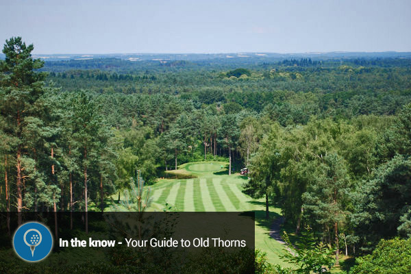 Planning a UK Golf Holiday? Everything you need to know about The Old Thorns Manor Hotel