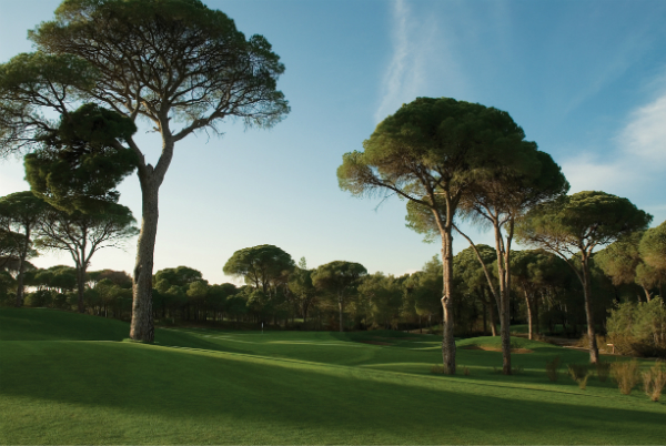 cornelia-faldo-golf-1