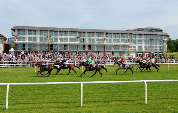 Things to do away from the course at marriott hotels for Show pool horse racing