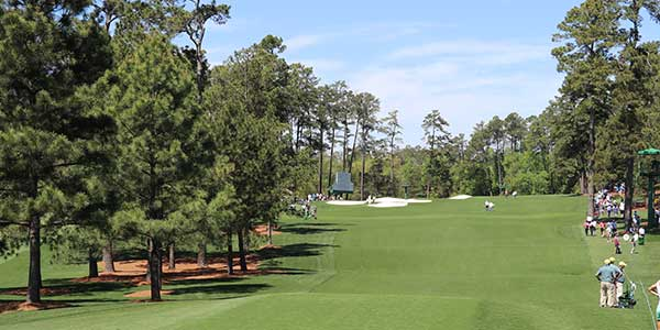 Augusta National - Hole 3 - Flowering Peach