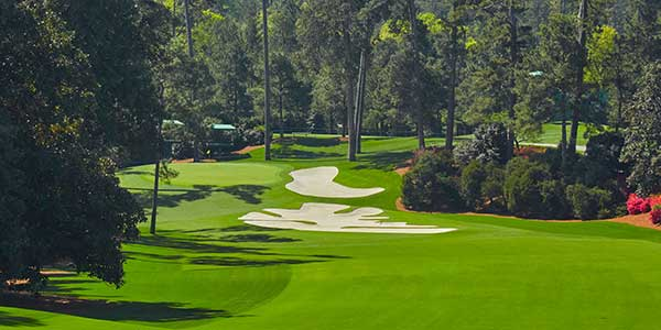 Augusta National - Hole 10 - Camellia