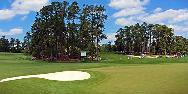 Augusta National - Hole 2 - Pink Dogwood